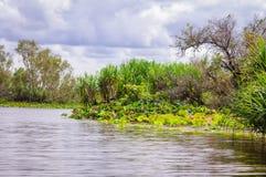 Corroboree Billabong en el Territorio del Norte, Australia es un paraíso para los pájaros, los pescados y la otra fauna fotografía de archivo