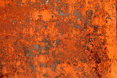 Corroded metal. Detail of an old metal red corroded door royalty free stock photography