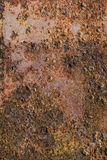 Corroded Metal Plate With Heavy Rust And Moss Growth. Old, scrapped, badly corroded rusty metal riveted plates, covered with cracked, decomposed layers of red Stock Images
