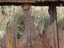 A corroded sheet piling and beach grass on the coast of the North sea island Sylt stock photography