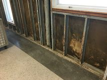 Corroded steel studs and mold on sheathing. After flooding stock images
