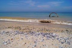Corrosão, mar, praia, onda, verão, mexilhões, água, oceano, metal, airon, imagens de stock royalty free