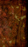 Corrosão, oxidação, oxidação fotos de stock royalty free