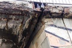Corrosione della struttura in cemento armato del ponte dovuto i reagenti del prodotto chimico e della precipitazione immagini stock libere da diritti