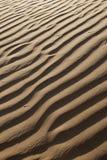 Corrugação de Sandy Fotografia de Stock Royalty Free