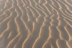 Corrugação de Sandy Imagem de Stock Royalty Free