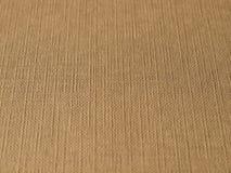 Corrugated cardboard blank sheet Royalty Free Stock Photography
