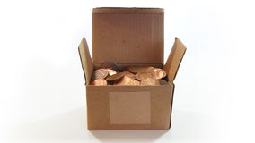Corrugated cardboard box open with American one cent coins inside on white background Stock Image