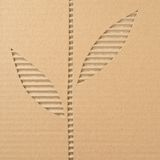 Corrugated cardboard. Leaves cut out on a corrugated cardboard Stock Image