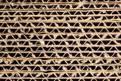 Corrugated cardboard texture Stock Image