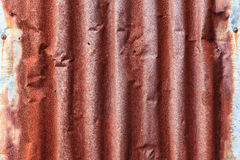 Corrugated galvanized metal sheet Royalty Free Stock Image