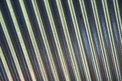 Corrugated metal background texture Stock Photography