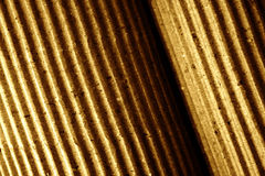 Corrugated paper, rolled-up, close-up, toned Stock Image