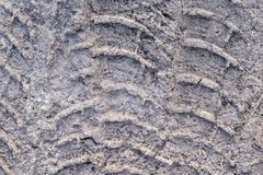 Corrugated trace of the auto tire on dirty snow Stock Photo