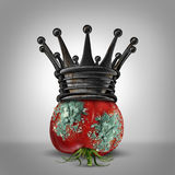 Corruption Leadership. Concept as a rotten tomato with mold wearing a rusted king crown as a business metaphor for a corrupt leader or oppressor slowly rotting Stock Image