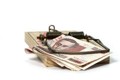Corruption trap. Money in a mouse trap, suitable to illustrate corruption issues Stock Photography