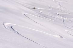 Corsa con gli sci Immagini Stock
