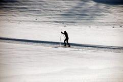Corsa con gli sci che attraversa il paese Fotografie Stock