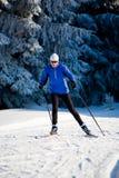 Corsa con gli sci che attraversa il paese Fotografia Stock