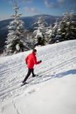 Corsa con gli sci che attraversa il paese del giovane Fotografia Stock