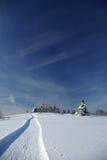 Corsa con gli sci che attraversa il paese in montagne slovacche Fotografie Stock
