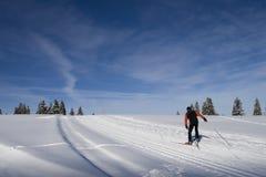 Corsa con gli sci che attraversa il paese in Svizzera Fotografia Stock