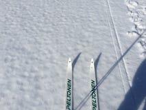 Corsa con gli sci del lago Fotografia Stock Libera da Diritti