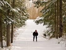 Corsa con gli sci del paese nordico o trasversale Fotografie Stock Libere da Diritti