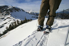Corsa con gli sci del paese posteriore con uno snowboard di spaccatura Immagine Stock