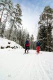 Corsa con gli sci del paese trasversale Immagine Stock
