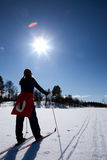Corsa con gli sci del paese trasversale Fotografia Stock Libera da Diritti
