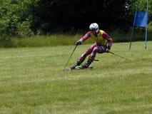 Corsa con gli sci dell'erba del WC - Cenkovice Fotografia Stock Libera da Diritti