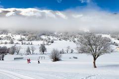 Corsa con gli sci dell'Paese-incrocio Fotografia Stock