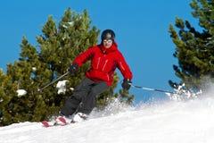 Corsa con gli sci dell'uomo fra gli alberi Immagini Stock