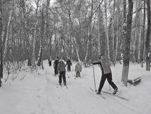 Corsa con gli sci della famiglia di sport nel parco della città immagine stock libera da diritti