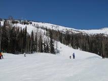 Corsa con gli sci della montagna. Immagine Stock Libera da Diritti