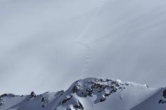 Corsa con gli sci della neve della polvere fotografie stock libere da diritti