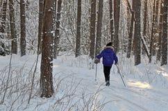 Corsa con gli sci della ragazza nella foresta Immagini Stock
