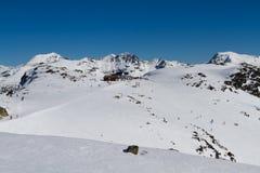 Corsa con gli sci di inverno Immagine Stock
