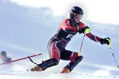 Corsa con gli sci in discesa Immagine Stock
