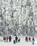 Corsa con gli sci in discesa fredda estrema 2 Immagini Stock