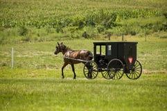 Corsa dei Amish Fotografia Stock