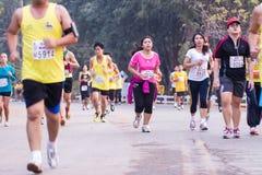 Corsa dei corridori maratona nel 2015 Immagine Stock Libera da Diritti