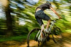 Corsa del mountain bike Fotografia Stock