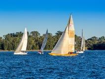 Corsa dell'yacht fotografie stock