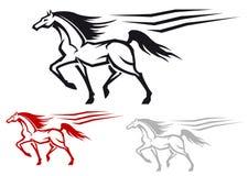Corsa dello stallion Fotografie Stock Libere da Diritti