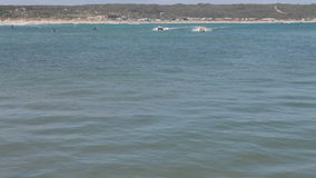 Corsa di barche di gomma dell'anatra verso lo spettatore stock footage