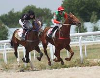 Corsa di cavalli. Immagine Stock Libera da Diritti