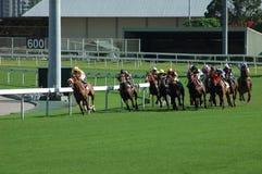 Corsa di cavalli Fotografie Stock Libere da Diritti