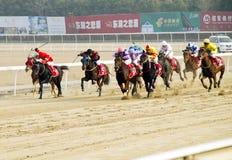 Corsa di cavalli in Cina. Fotografia Stock